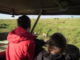 19-serengeti