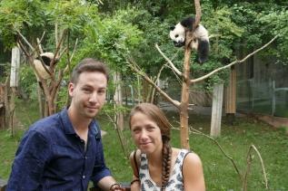 38-reserve-panda-chengdu
